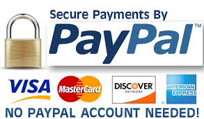 PayPal Payment Security