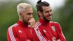 Wales vs Northern Ireland. Match Preview 25 June, 2016