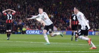 Bournemouth vs Everton Predictions and Tips 15.09.2019
